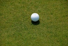 golf-ball-on-putting-green[1]