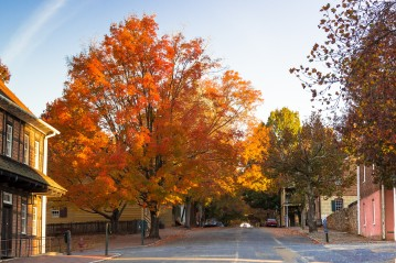 Autumn at Old Salem